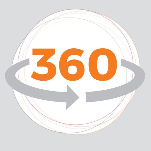 Synapse 360 bundle